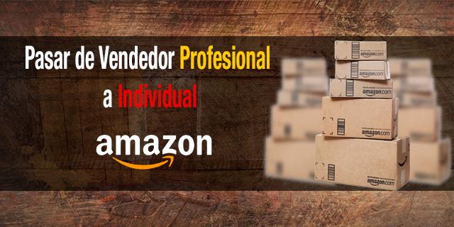 Pasar-de-vendedor-profesional-a-individual-en-amazon